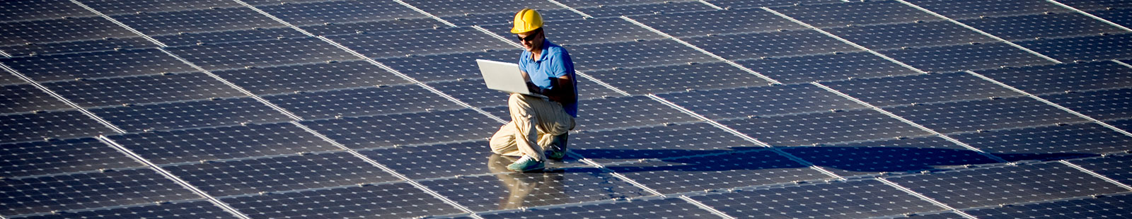 Employee with laptop checking on solar panels